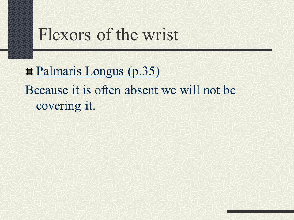 Flexors of the wrist Palmaris Longus (p.35)