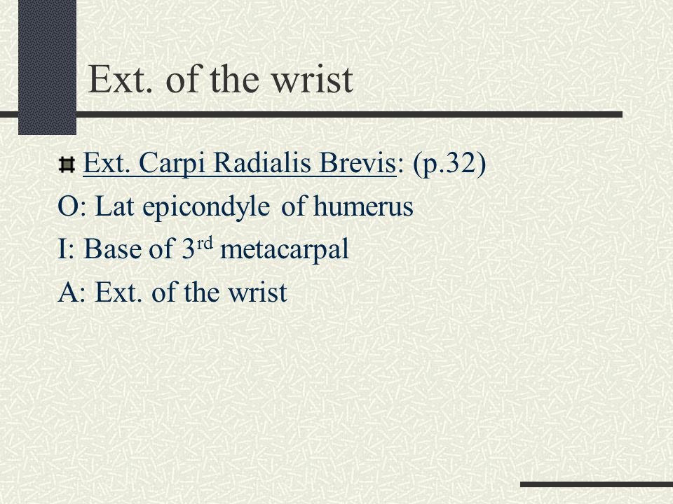 Ext. of the wrist Ext. Carpi Radialis Brevis: (p.32)