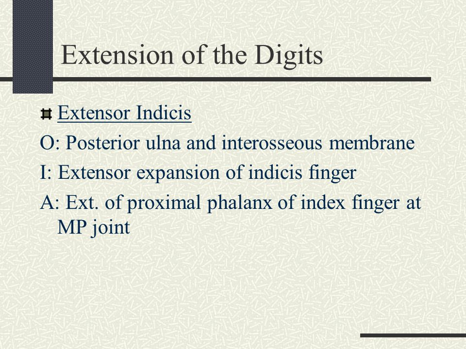 Extension of the Digits
