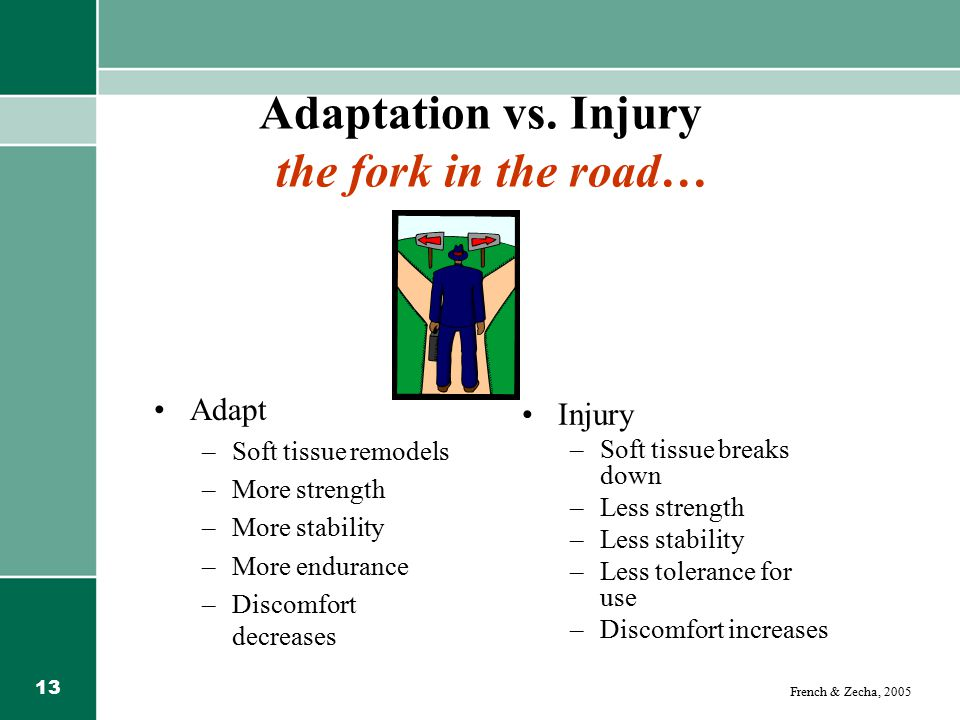 Adaptation vs. Injury the fork in the road…