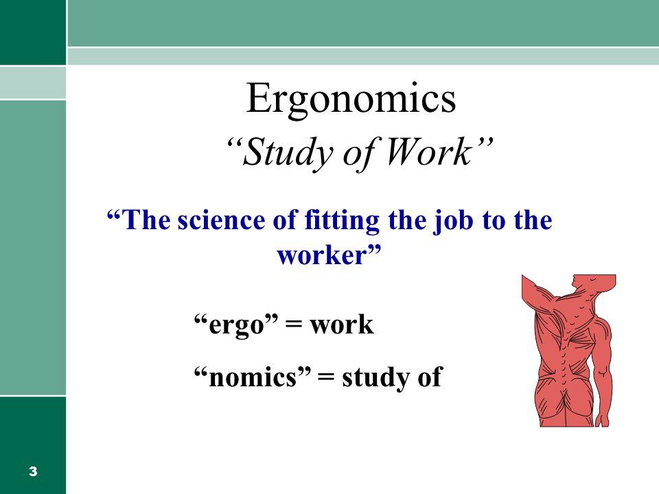 Ergonomics Study of Work