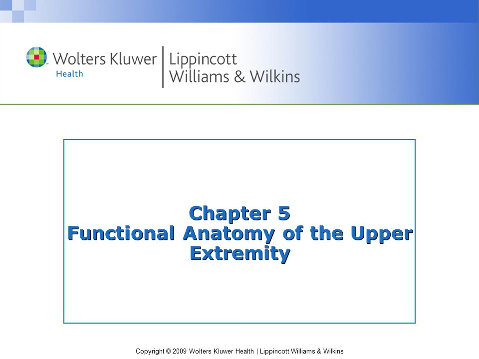 Chapter 5 Functional Anatomy of the Upper Extremity
