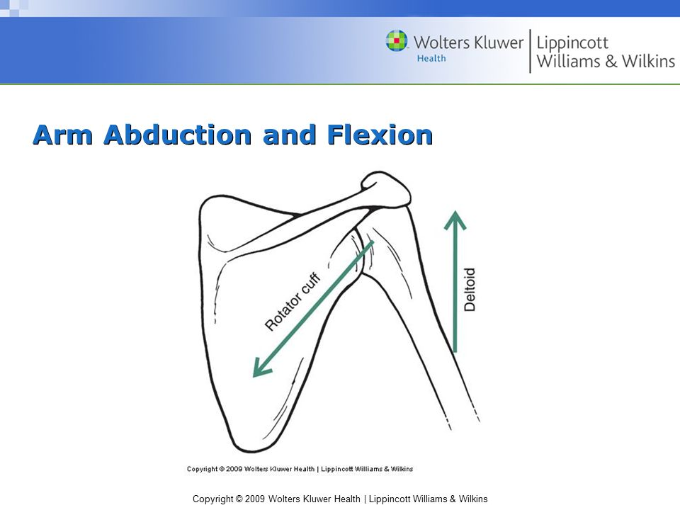 Arm Abduction and Flexion