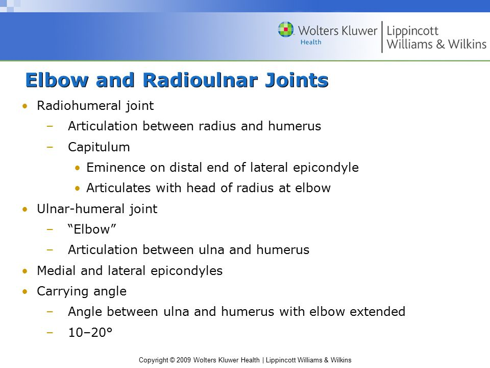 Elbow and Radioulnar Joints
