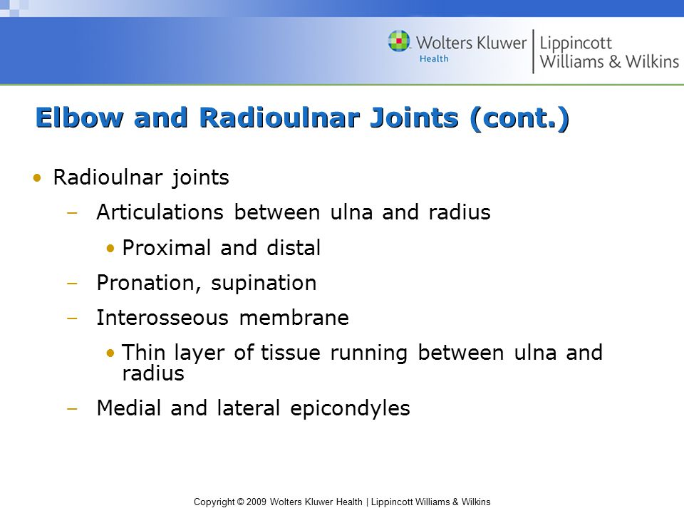 Elbow and Radioulnar Joints (cont.)