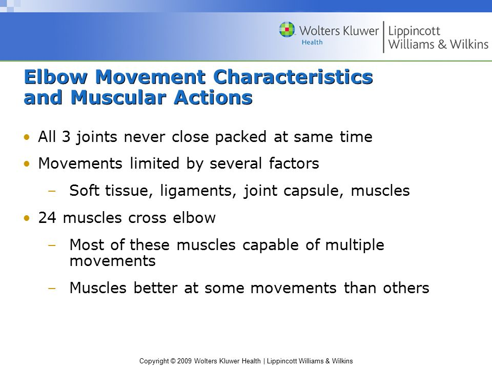 Elbow Movement Characteristics and Muscular Actions