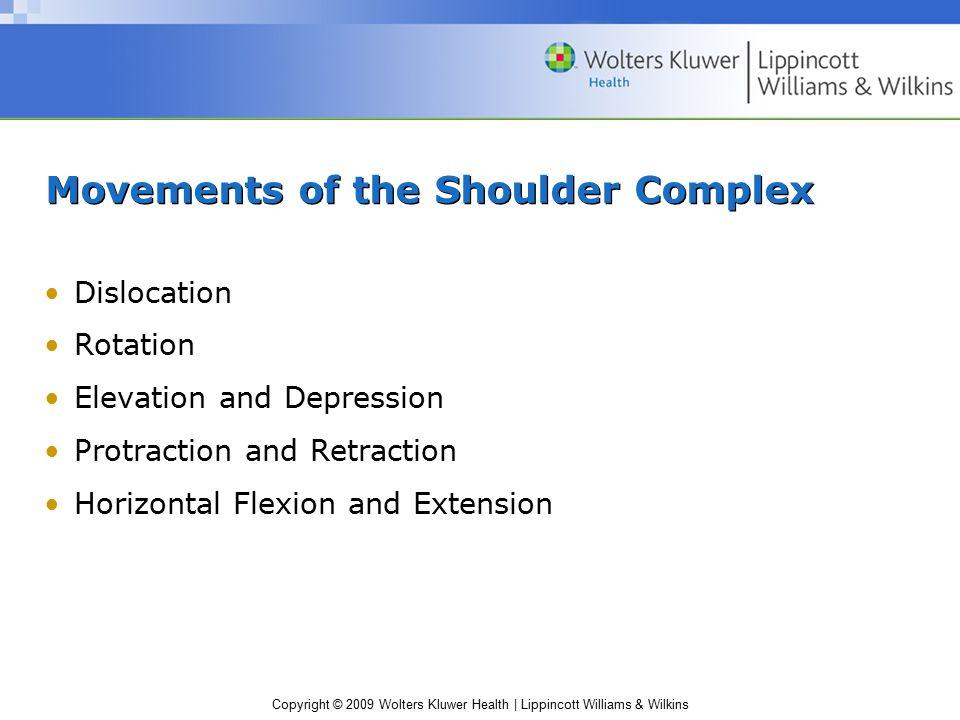 Movements of the Shoulder Complex