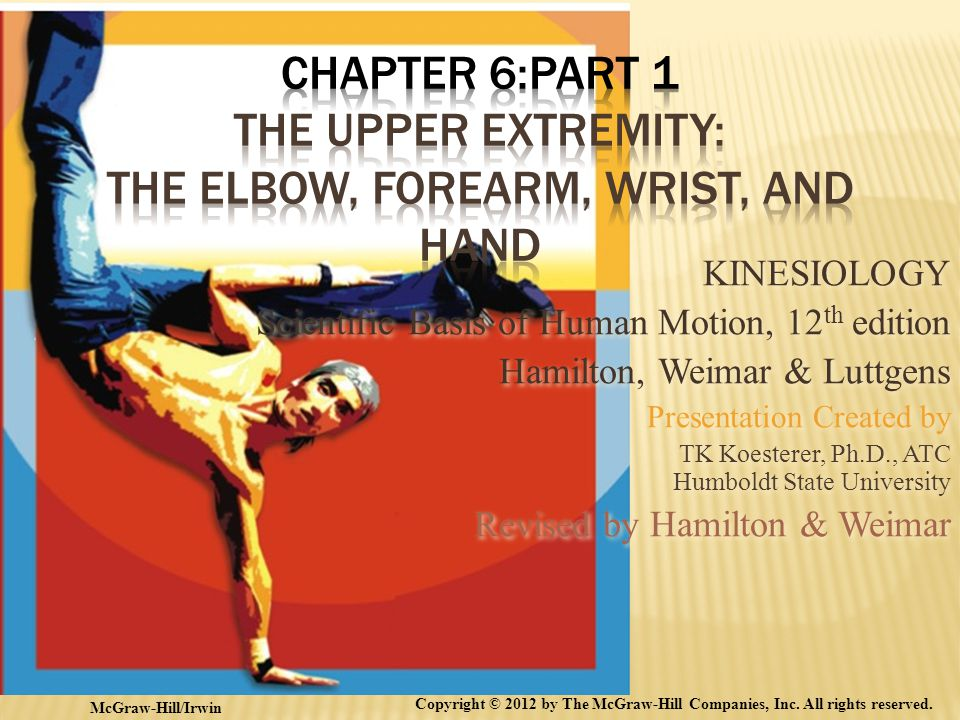 Chapter 6:Part 1 The Upper Extremity: The Elbow, Forearm, Wrist, And Hand