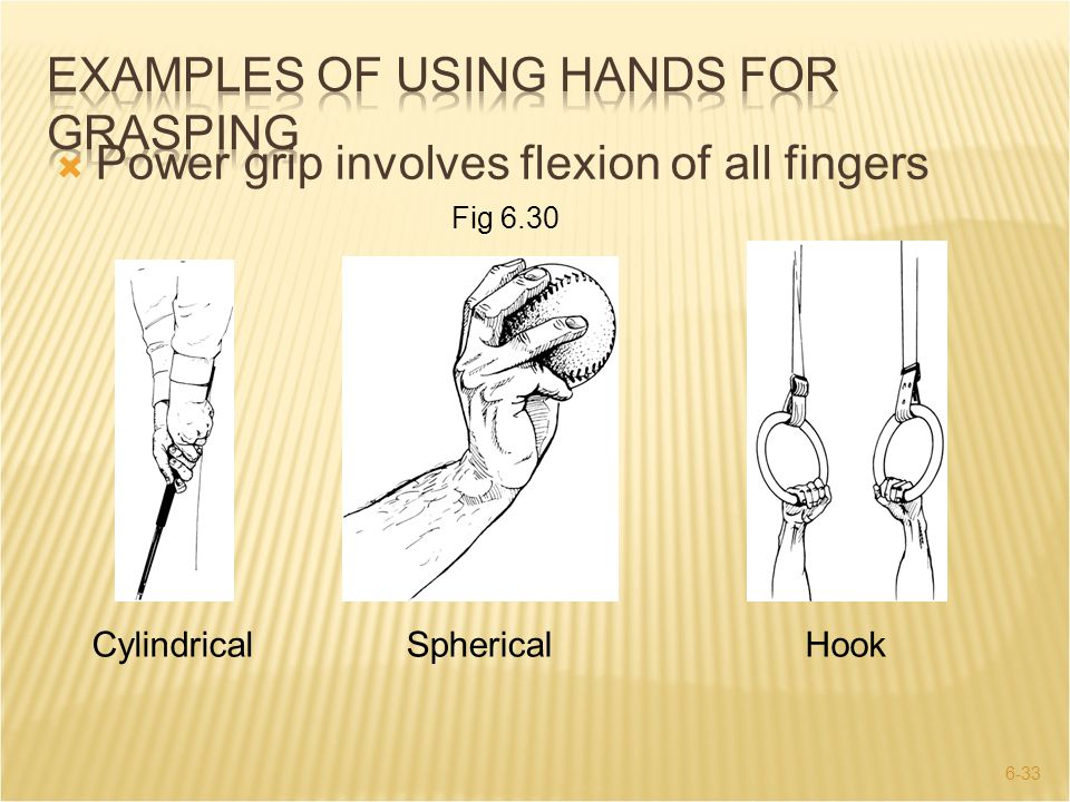 Examples of Using Hands for Grasping