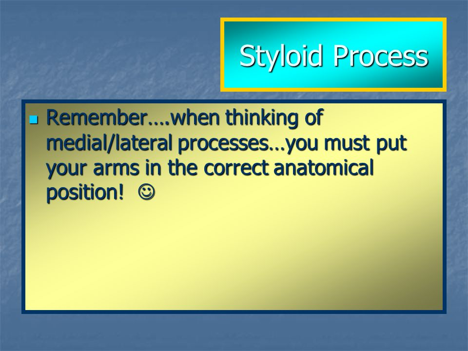 Styloid Process Remember….when thinking of medial/lateral processes…you must put your arms in the correct anatomical position.