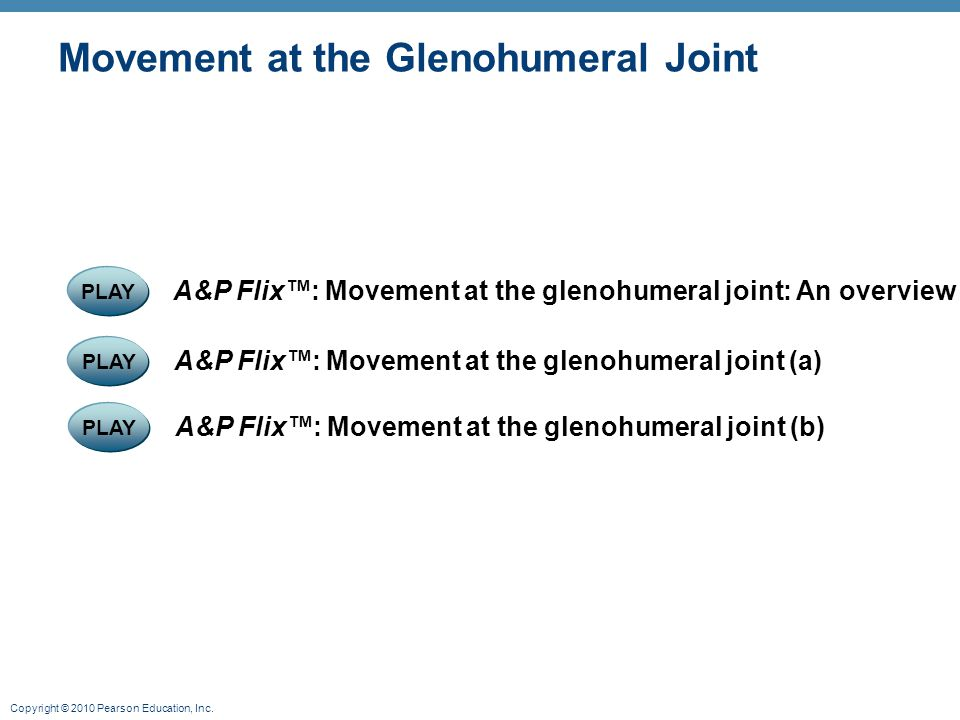 Movement at the Glenohumeral Joint
