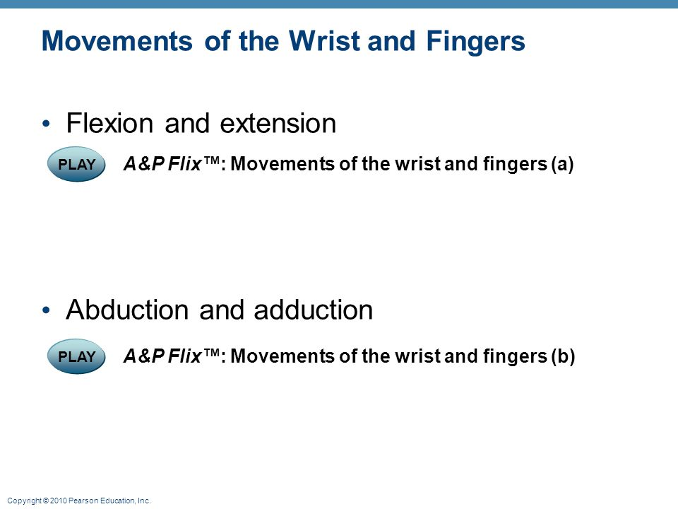 Movements of the Wrist and Fingers