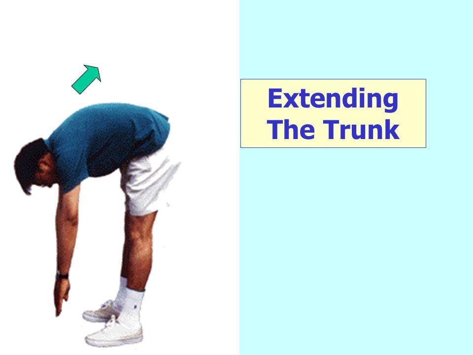 Extending The Trunk