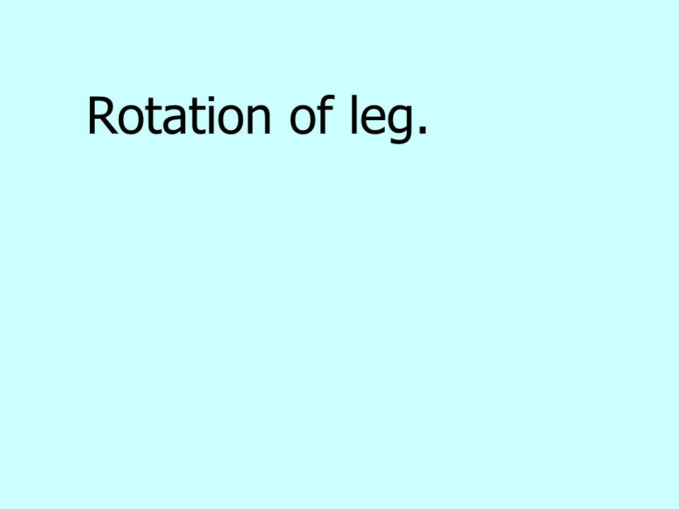 Rotation of leg.
