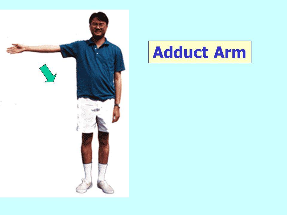 Adduct Arm
