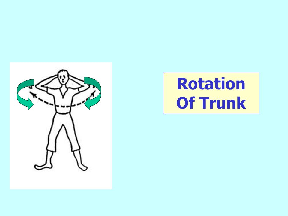 Rotation Of Trunk