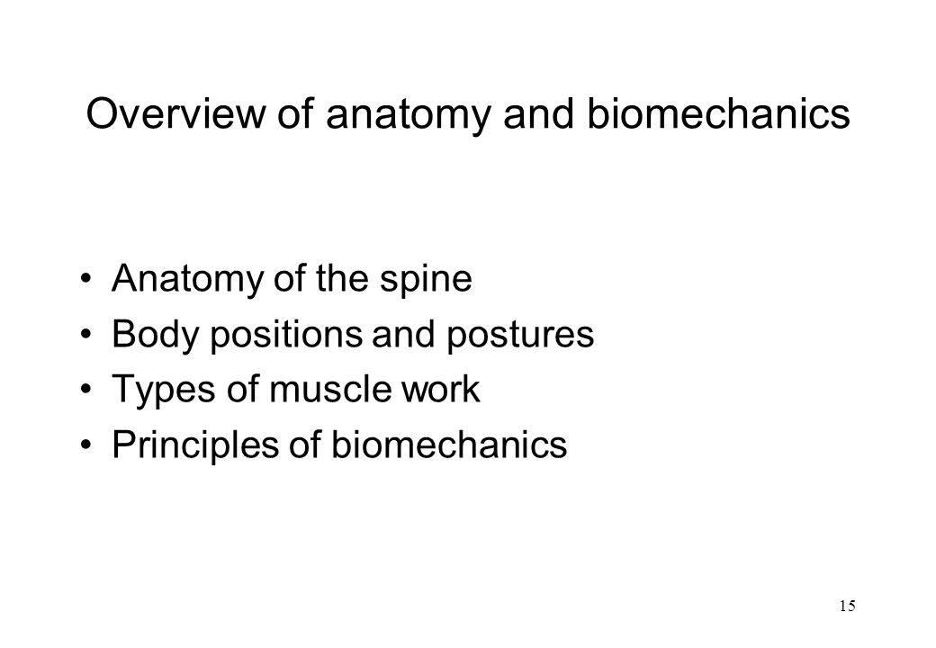 Overview of anatomy and biomechanics