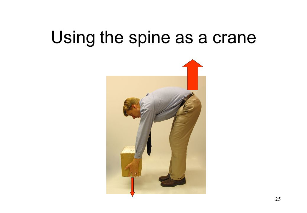Using the spine as a crane