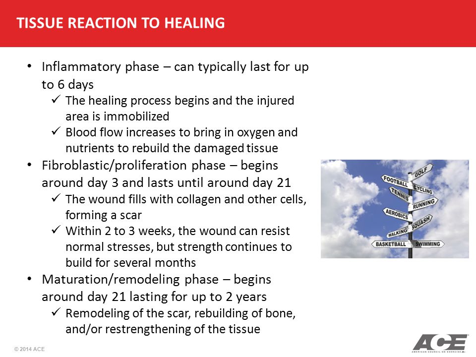 TISSUE REACTION TO HEALING