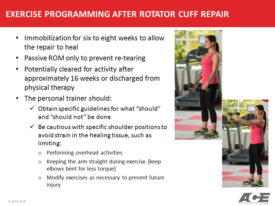 EXERCISE PROGRAMMING AFTER ROTATOR CUFF REPAIR