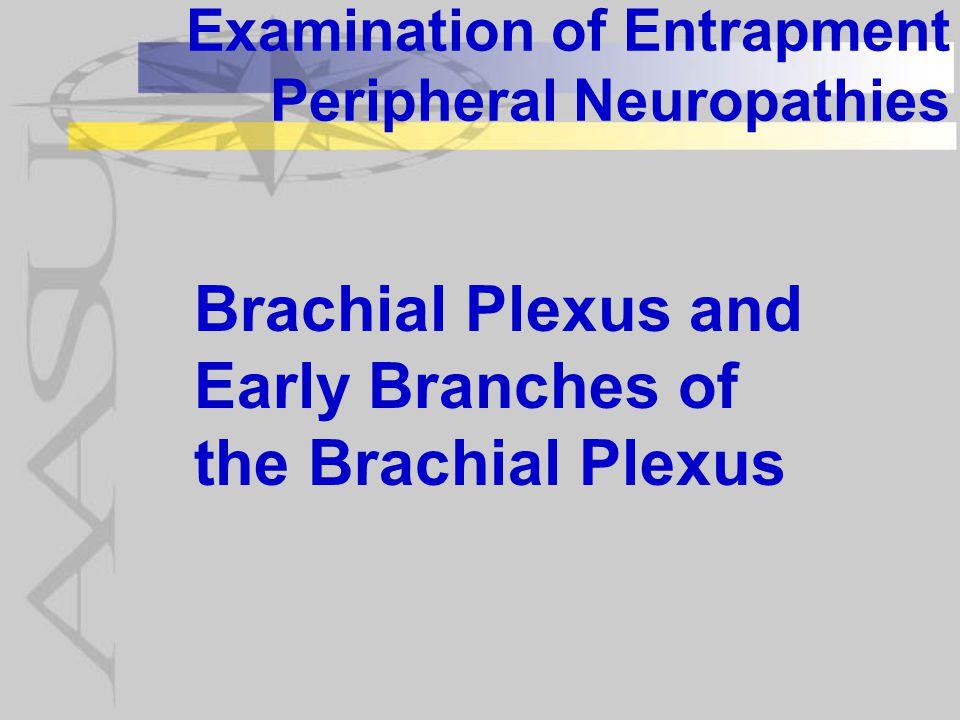 Examination of Entrapment Peripheral Neuropathies