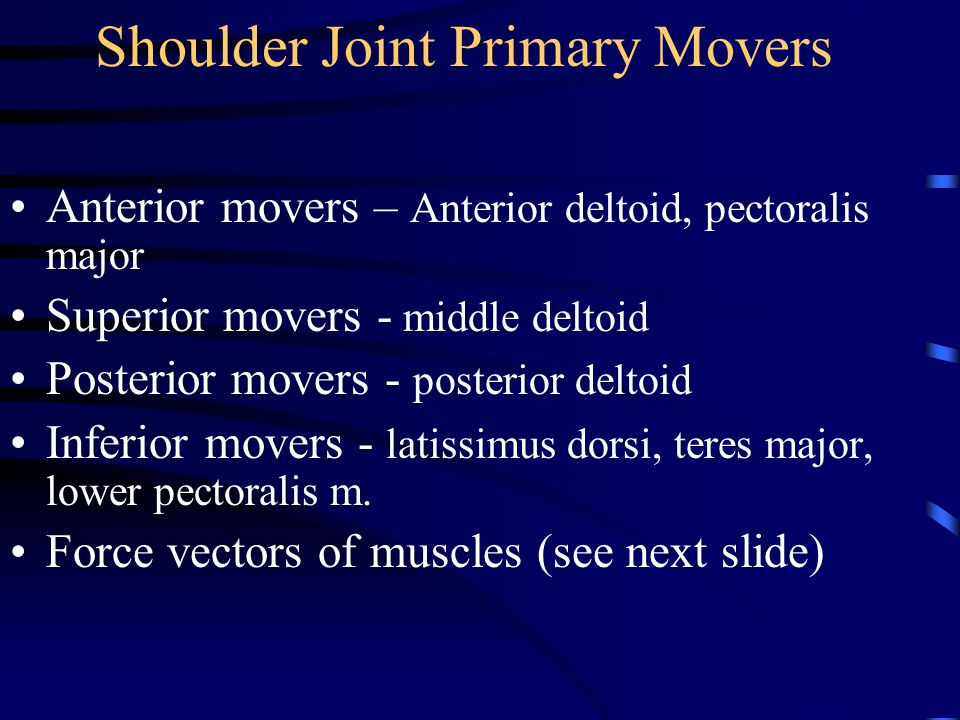 Shoulder Joint Primary Movers