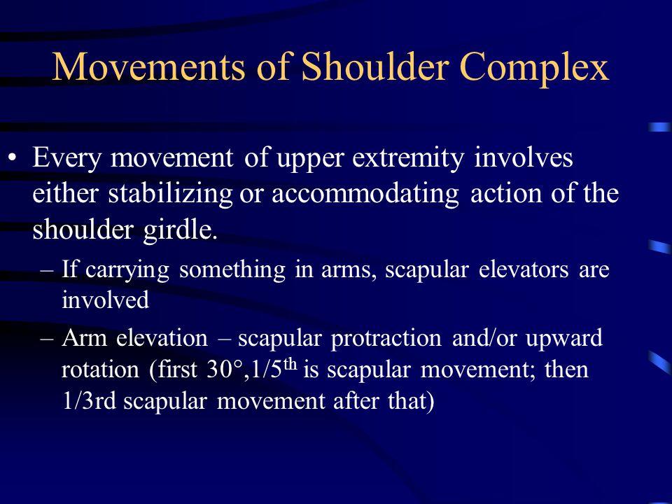 Movements of Shoulder Complex