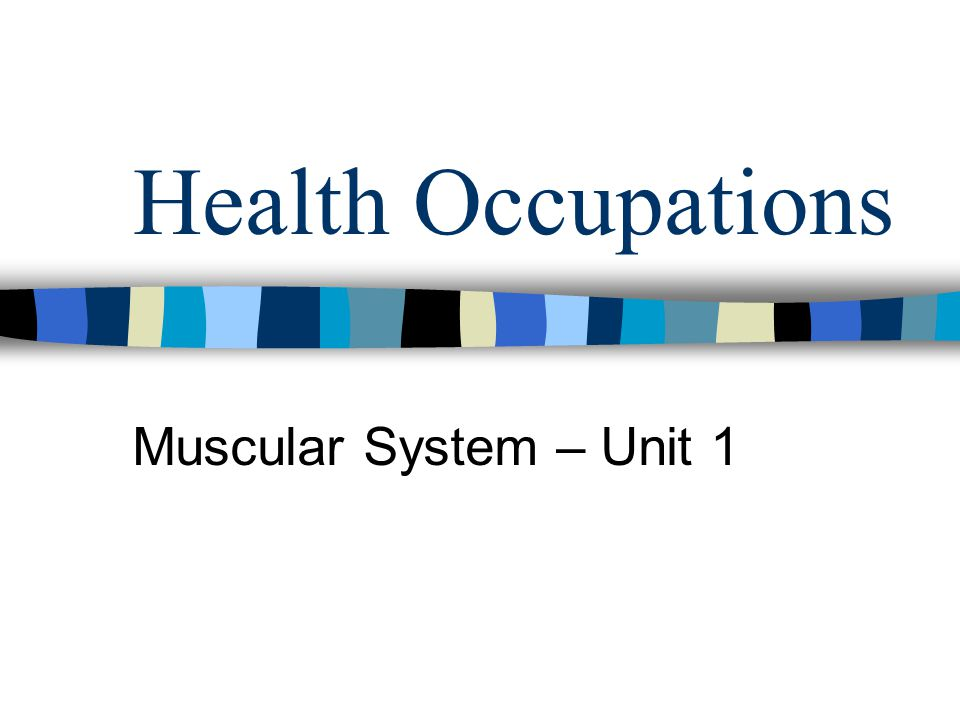 Health Occupations Muscular System – Unit 1