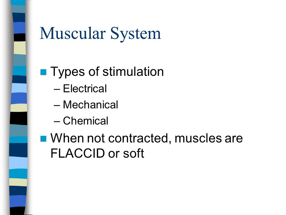 Muscular System Types of stimulation