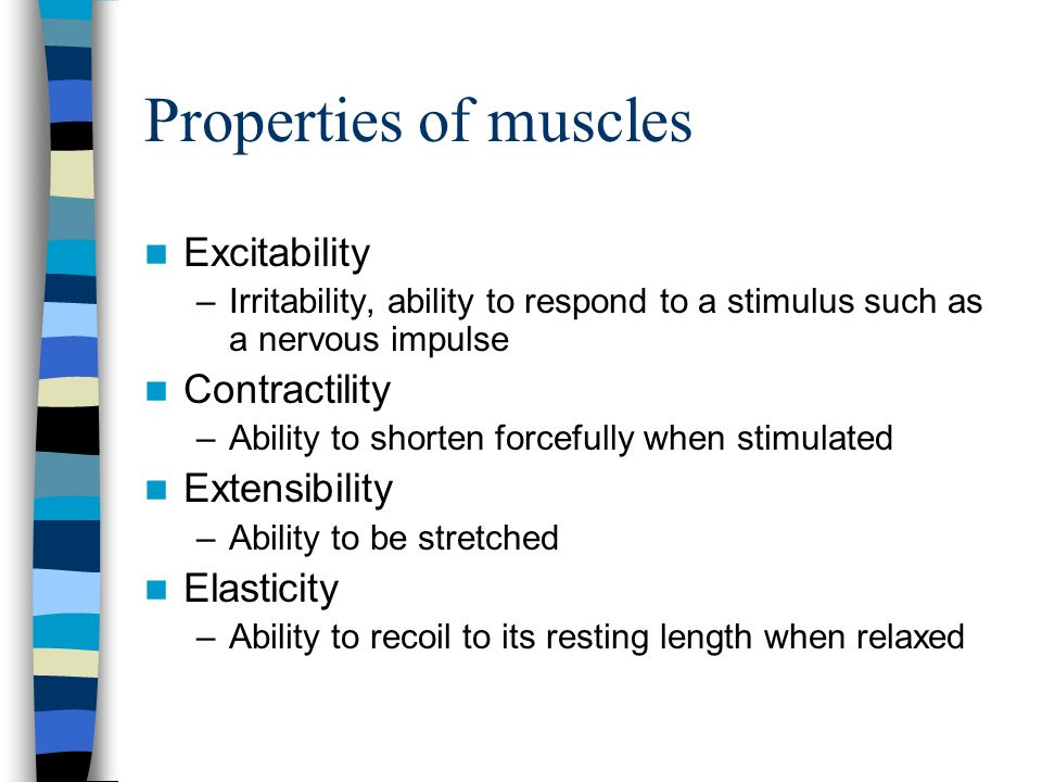 Properties of muscles Excitability Contractility Extensibility