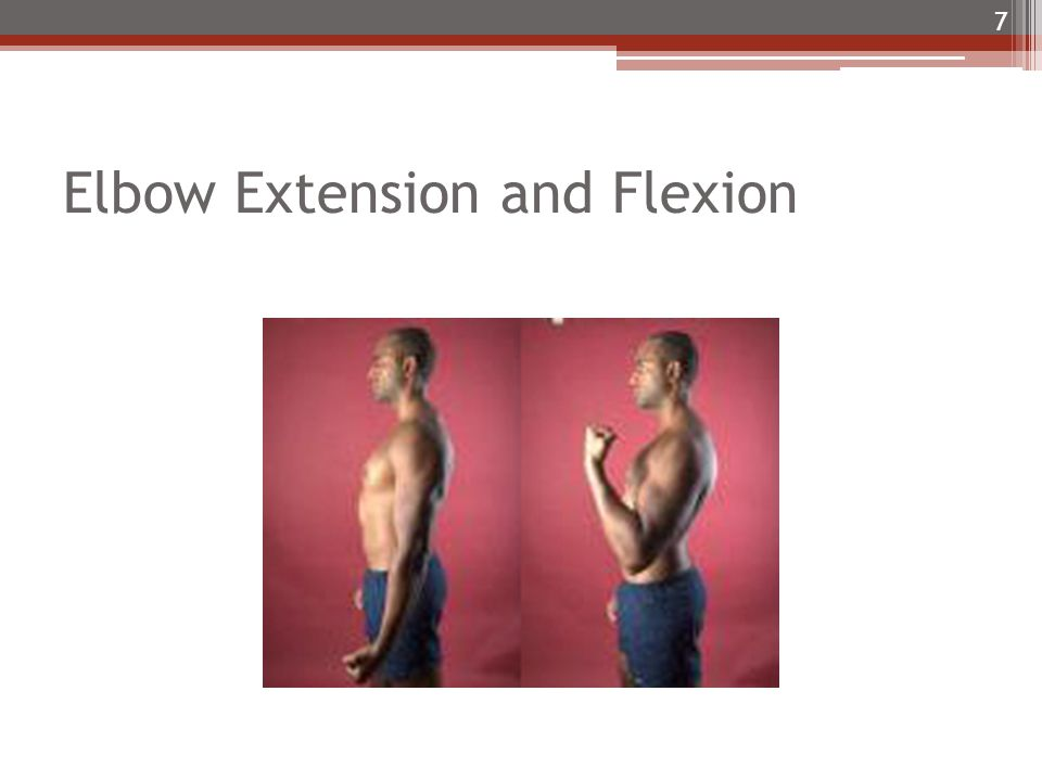 Elbow Extension and Flexion