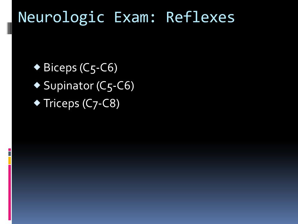 Neurologic Exam: Reflexes