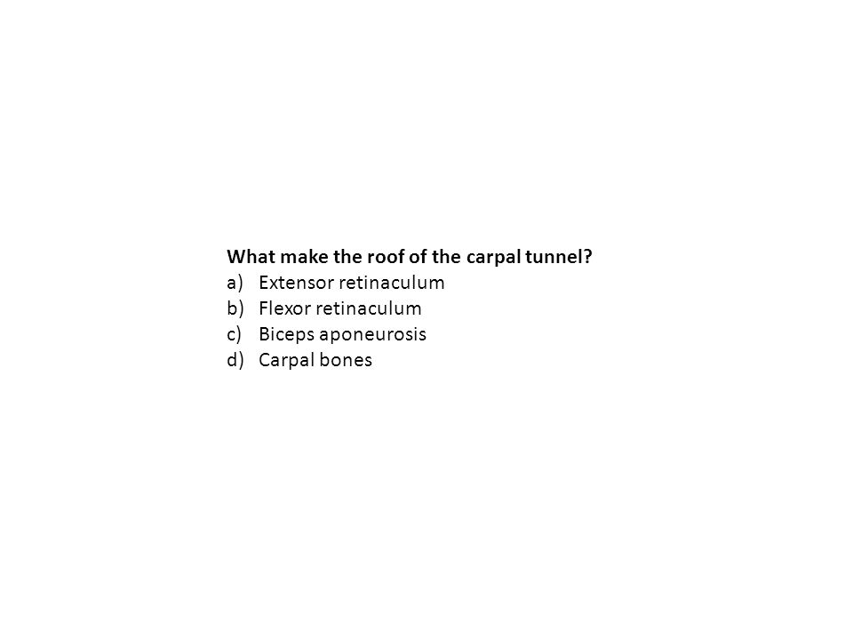 What make the roof of the carpal tunnel