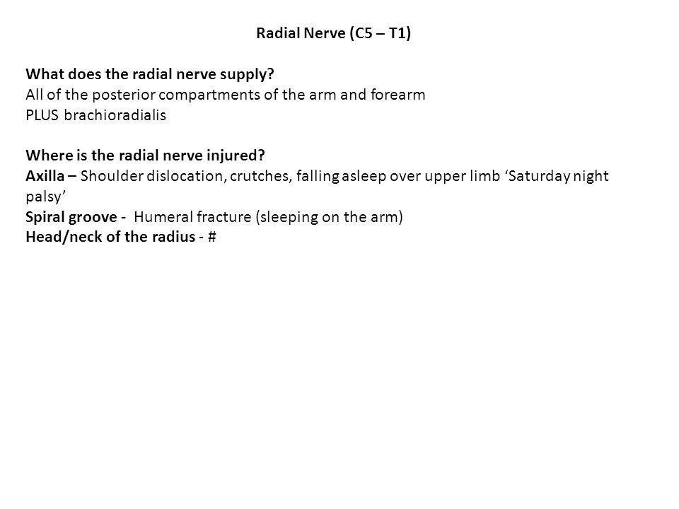 Radial Nerve (C5 – T1) What does the radial nerve supply All of the posterior compartments of the arm and forearm.
