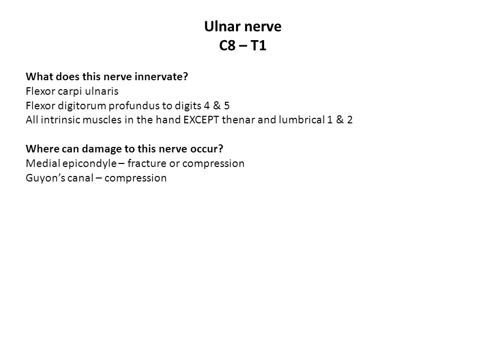Ulnar nerve C8 – T1 What does this nerve innervate