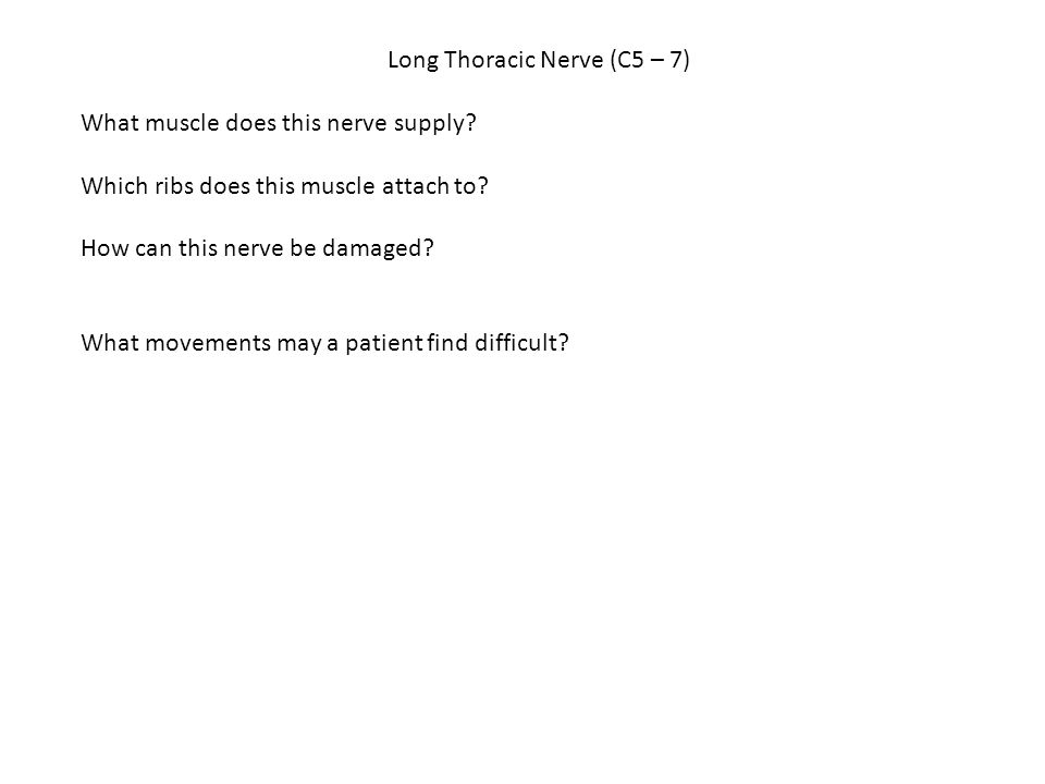 Long Thoracic Nerve (C5 – 7)