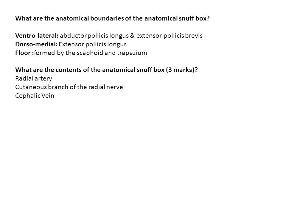 What are the anatomical boundaries of the anatomical snuff box