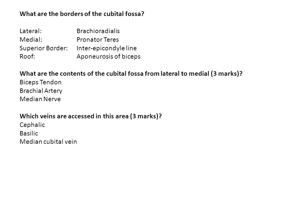 What are the borders of the cubital fossa