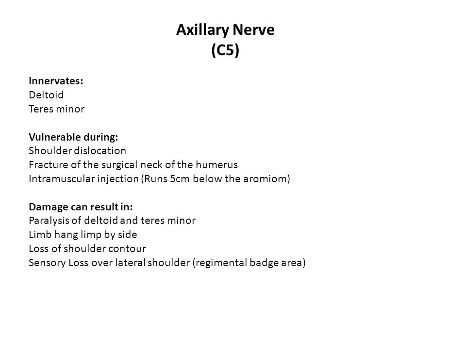 Axillary Nerve (C5) Innervates: Deltoid Teres minor Vulnerable during: