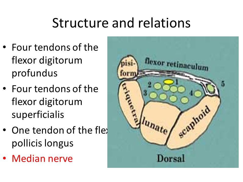 Structure and relations