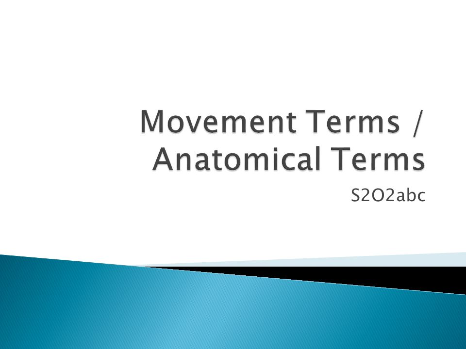 Movement Terms / Anatomical Terms