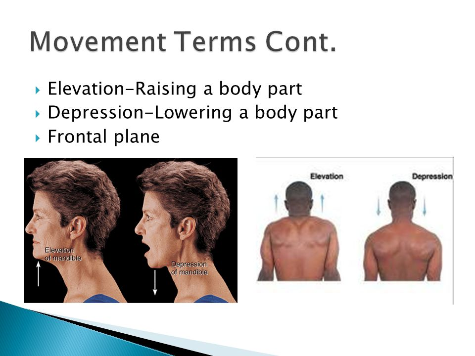 Movement Terms Cont. Elevation-Raising a body part