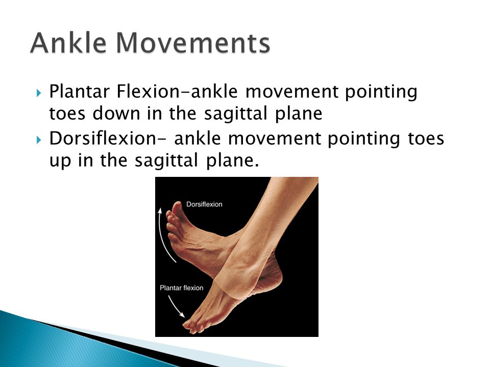 Ankle Movements Plantar Flexion-ankle movement pointing toes down in the sagittal plane.