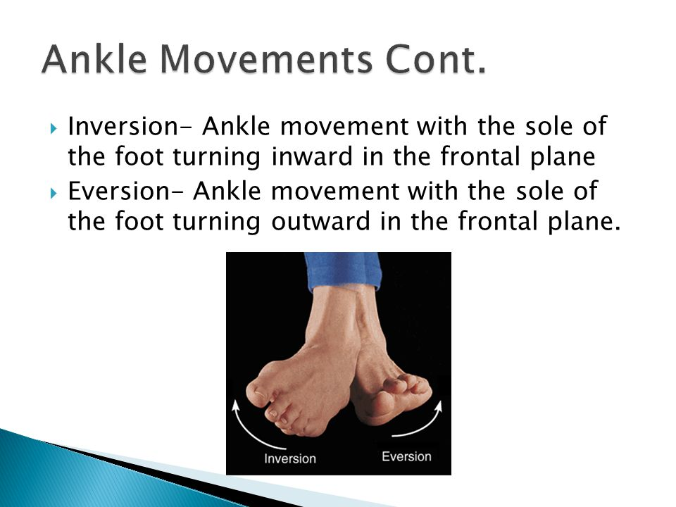 Ankle Movements Cont. Inversion- Ankle movement with the sole of the foot turning inward in the frontal plane.