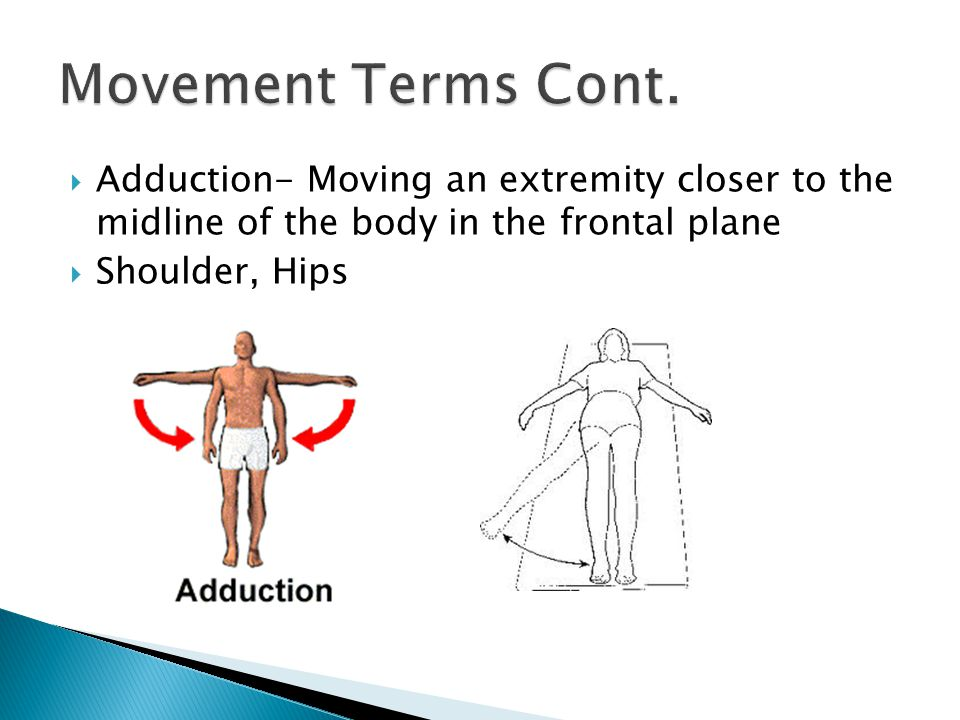 Movement Terms Cont. Adduction- Moving an extremity closer to the midline of the body in the frontal plane.