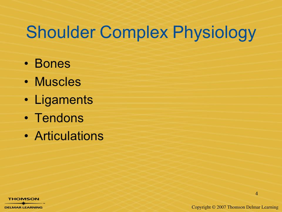 Shoulder Complex Physiology