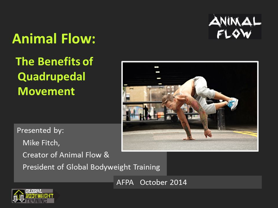 Animal Flow: The Benefits of Quadrupedal Movement