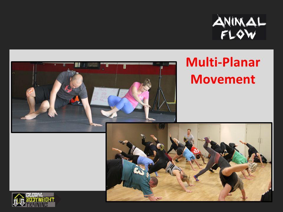 Multi-Planar Movement