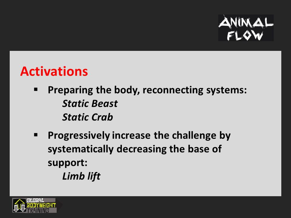 Activations Preparing the body, reconnecting systems: Static Beast