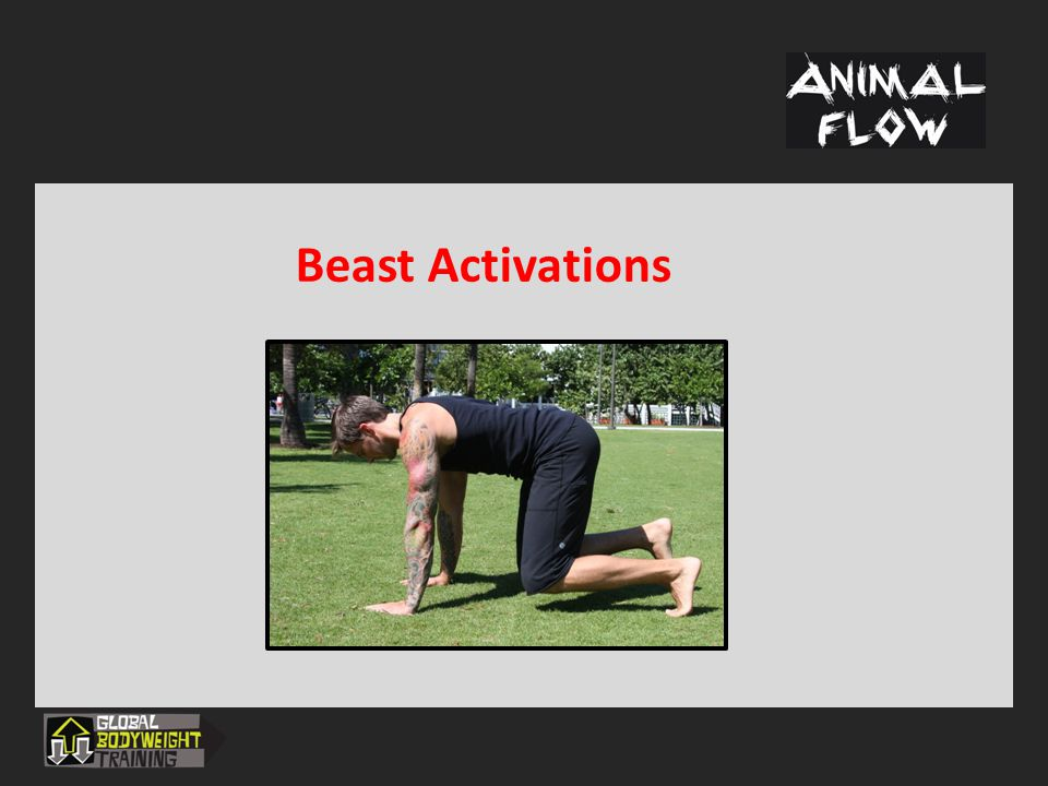 Beast Activations